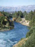 Exit River from Lake Wanaka, Otago, South Island, New Zealand, Pacific Photographic Print by D H Webster