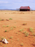 A Shack in the Outback, New South Wales, Australia Photographic Print by Mark Mawson