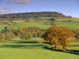 Countryside in Autumn in the Otter Valley, Devon, England, UK Photographic Print by John Miller