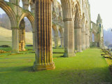 Rievaulx Abbey, Yorkshire, England Photographic Print by Rob Cousins