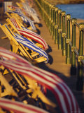 Windblown Deckchairs on Seafront, Sidmouth, Devon, England Photographic Print by John Miller