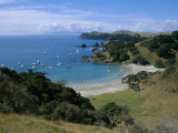 Boats at Anchorage, Waiheke Island, Central Auckland, North Island, New Zealand, Pacific Photographic Print by D H Webster