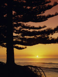 Sunrise, Pine Beach, Gisborne, East Coast, North Island, New Zealand, Pacific Photographic Print by Dominic Webster
