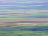 Agricultural Landscape, Champagne, France, Europe Photographic Print by John Miller