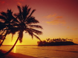 Silhouette of Palm Trees and Desert Island at Sunrise, Rarotonga, Cook Islands, South Pacific Photographic Print by Dominic Webster