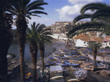 Camara De Lobos, Madeira, Portugal, Europe Photographic Print by Jennifer Fry