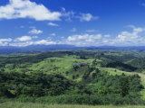 Malanda, Atherton Tableland, Queensland, Australia Photographic Print by Rob Cousins