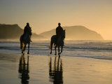 Horse Riding on the Beach at Sunrise, Gisborne, East Coast, North Island, New Zealand, Pacific Photographic Print by D H Webster