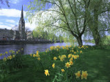 City in Spring, Perth, Perthshire, Tayside, Scotland, UK, Europe Photographic Print by Kathy Collins