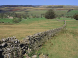 Wensleydale, Yorkshire Dales National Park, Yorkshire, England, UK, Europe Photographic Print by Mark Mawson