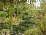 Water Garden and Bridge, Monet's Garden, Giverny, Haute Normandie (Normandy), France, Europe Photographic Print by John Miller