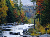 White Mountains National Forest, Near Jackson, New Hampshire, USA Photographic Print by Fraser Hall