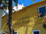 Flamenco Bar, Marbella Old Town, Costa Del Sol, Andalucia, Spain, Europe Photographic Print by Fraser Hall