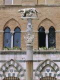 Statue of Romulus and Remus in the Piazza Del Duomo, Siena, Tuscany, Italy, Europe Photographic Print by Fraser Hall