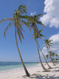 Saona Island, South Coast, Dominican Republic, Central America Photographic Print by Guy Thouvenin