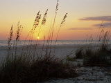 Sunset, Gulf Coast, Longboat Key, Anna Maria Island, Beach, Florida, USA Lmina fotogrfica por Fraser Hall