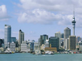 City Skyline, Auckland, North Island, New Zealand, Pacific Photographic Print by Neale Clarke