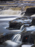 Lower Aysgarth Falls Near Hawes, Wensleydale, Yorkshire Dales National Park, Yorkshire, England, UK Photographic Print by Neale Clarke