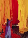 Sari Garment Factory, Rajasthan, India Photographic Print by Bruno Morandi