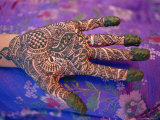 Hand Decorated with Design in Henna, Rajasthan, India Photographic Print by Bruno Morandi