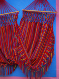 Hammock, Taquira, Boyaca Region, Colombia, South America Photographic Print by D Mace