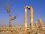 The Temple of Hercules, Amman, Jordan, Middle East Photographic Print by Neale Clarke