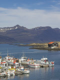 Fishing Boats in Djupivogur Harbour, East Area, Iceland, Polar Regions Photographic Print by Neale Clarke