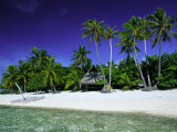 Beach and Palm Trees, Tahiti, Society Islands, French Polynesia, South Pacific Islands, Pacific Photographic Print by Sylvain Grandadam