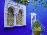 Jardin Majorelle, Marrakech, Morocco Photographic Print by Bruno Morandi