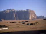 Bedu (Bedouin) Tents at Abu Aineh, Wadi Rum, Jordan Photographic Print by Richard Ashworth