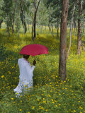 Ethiopian Woman Holding a Red Umbrella in a Field of Eucalyptus and Blooming Yellow Meskel Flowers Photographic Print by Gavin Hellier