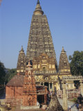 The Mahabodhi Temple, India Photographic Print by Alison Wright