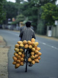 Man Carrying Coconuts on the Back of His Bicycle, Sri Lanka, Asia Photographic Print by Yadid Levy