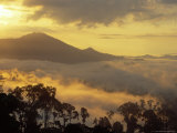 Dawn Over Bukit or Mt.Danum and the Virgin Dipterocarp Rainforest Canopy, Borneo Photographic Print by Louise Murray