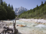 View Along Stony Shallow River Velika Pisnca to Prisank Mountain, Dolina, Slovenia Photographic Print by Pearl Bucknell