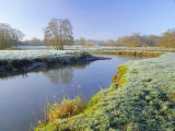 A Frosty Morning on Surrey Wildlife Trust's Wetland Reserve, Surrey, England Photographic Print by Pearl Bucknell