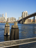 Brooklyn Bridge and the East River from the Fulton Ferry Landing, New York, USA Photographic Print by Amanda Hall