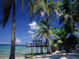 Waterside Restaurant Beneath Palms, Old Man Bay, Grand Cayman, Cayman Islands, West Indies Photographic Print by Ruth Tomlinson