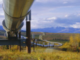 Trans Alaska Oil Pipeline Across Taiga Through Alaskan Range Carried on Insulated Ground Piles Photographic Print by Anthony Waltham