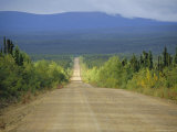 Taylor Highway, Gravel Road Through Pine Forest, Alaska, USA Photographic Print by Anthony Waltham