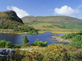 Ring of Kerry, Between Upper Lake and Muckross Lake, Killarney, Munster, Republic of Ireland (Eire) Photographic Print by Roy Rainford