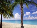Palm Trees, Beach and Still Turquoise Sea, Seven Mile Beach, Cayman Islands, West Indies Photographic Print by Ruth Tomlinson