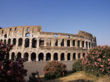 The Colosseum, Rome, Lazio, Italy, Europe Photographic Print by Nico Tondini