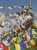Buddhist Prayer Flags, Mcleod Ganj, Dharamsala, Himachal Pradesh State, India, Asia Photographic Print by Jochen Schlenker
