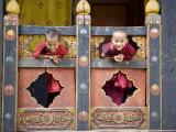 Young Buddhist Monks, Paro Dzong, Paro, Bhutan, Asia Photographic Print by Angelo Cavalli