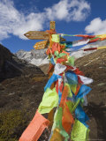 Prayer Flags, Yading Nature Reserve, Sichuan Province, China, Asia Photographic Print by Jochen Schlenker