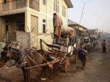 Horse Drawn Taxi, Pin Oo Lwyn, Myanmar (Burma), Asia Photographic Print by Colin Brynn