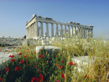 The Parthenon, Unesco World Heritage Site, Athens, Greece, Europe Photographic Print by Christina Gascoigne
