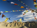 Prayer Flags on the Peak of Victory, Leh, Ladakh, Indian Himalayas, India, Asia Photographic Print by Jochen Schlenker