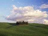 Countryside Near Montalcino, Siena Area, Tuscany, Italy, Europe Photographic Print by Nico Tondini